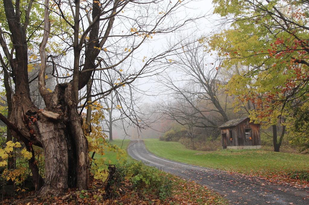 Briggs Trail