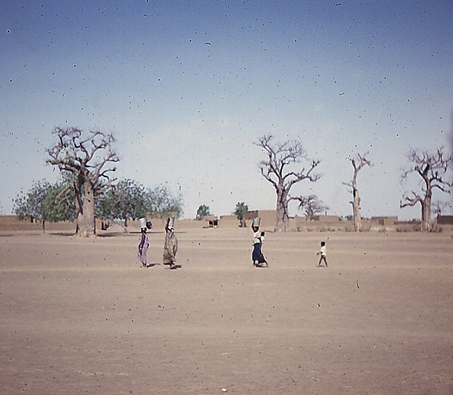 Water Bearers in Mali
