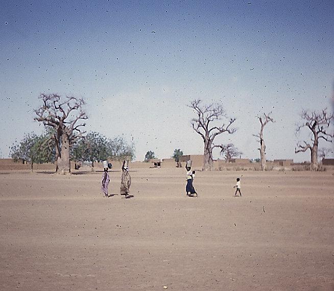 Water Bearers in Mali