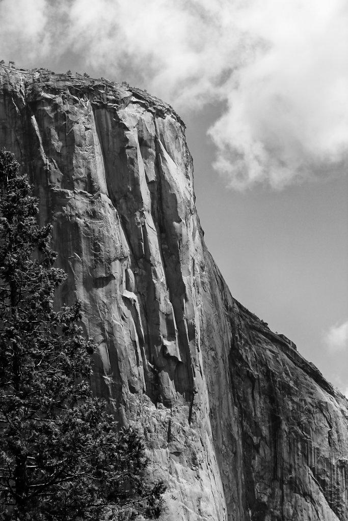 Yosemite Textures