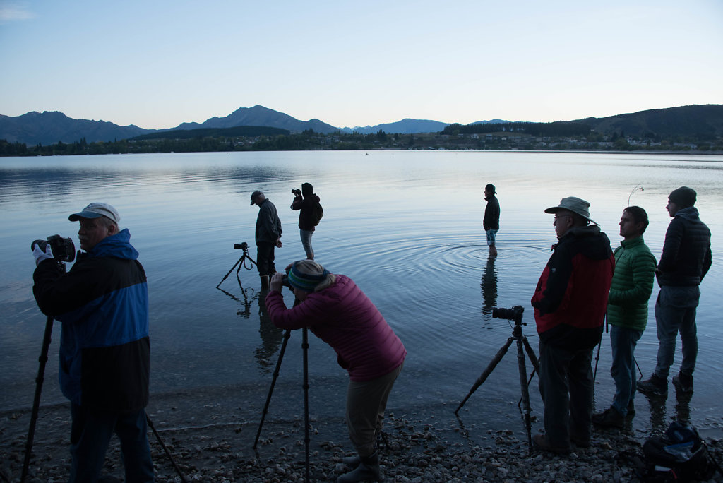 Photographers in and around Wanaka Lake at dawn. Why?