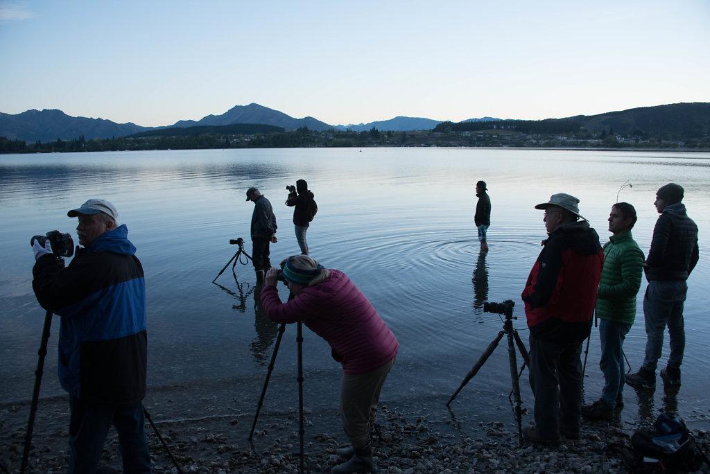 Photographers in and around Wanaka Lake at dawn. Why?