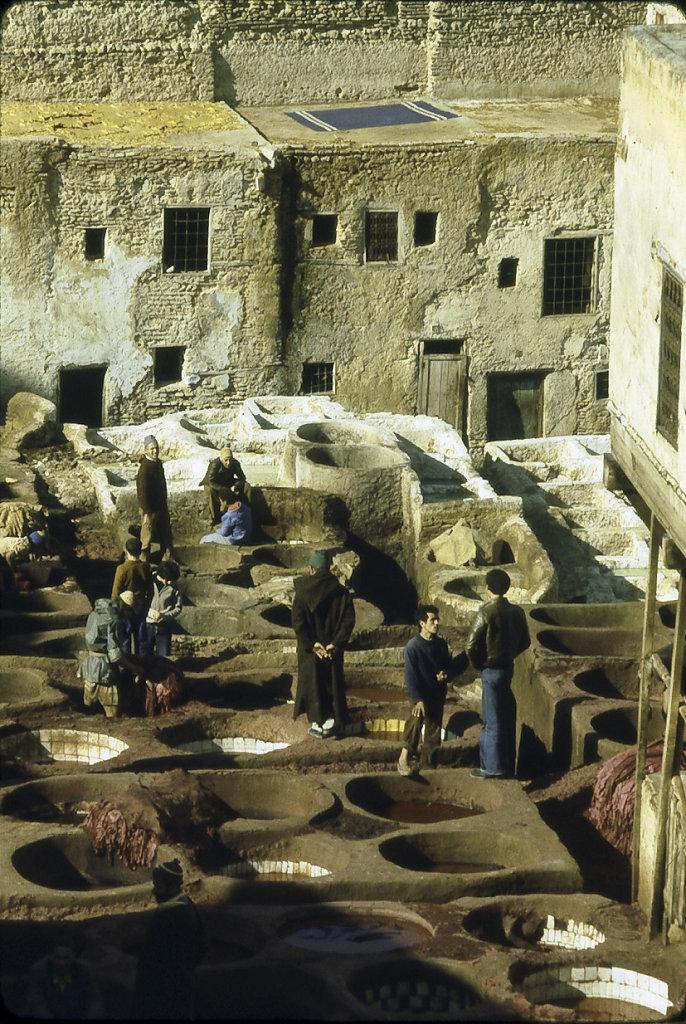 Tannery Chouwara, Fez, Morocco