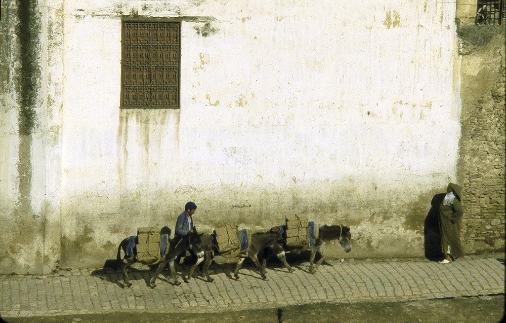 Street Scene in Fez