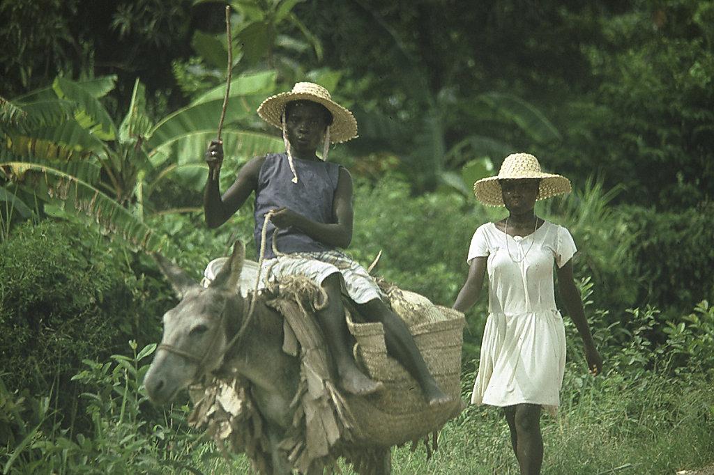Haitian Transportation
