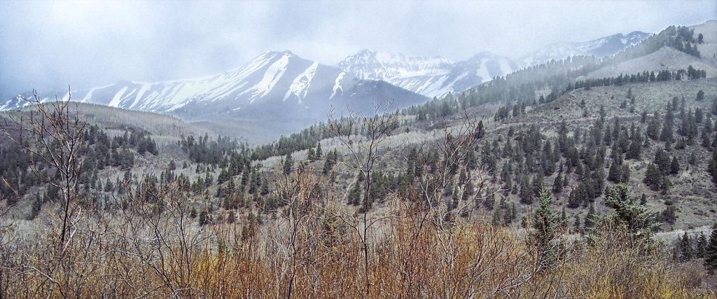 Varied Terrain in Colorado