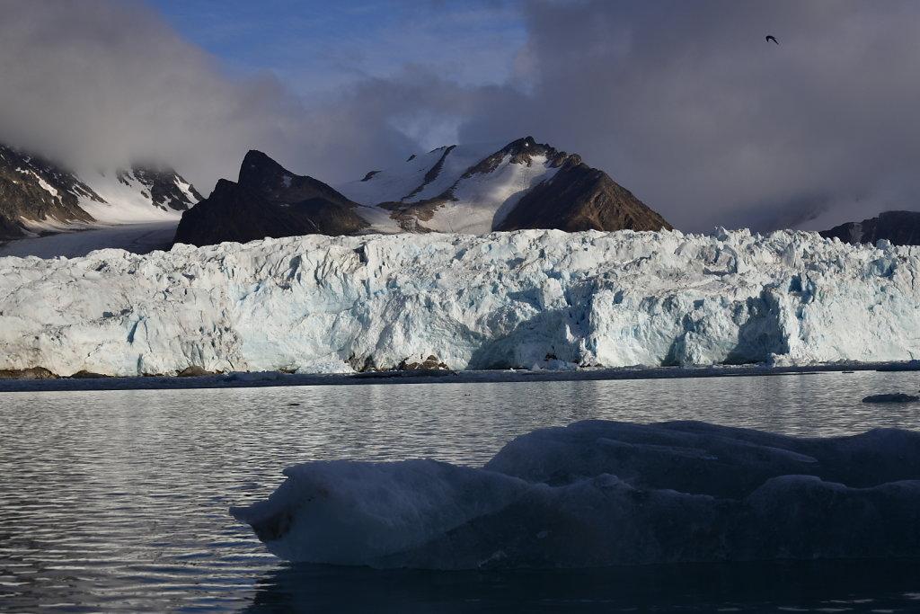 Arctic View #3239