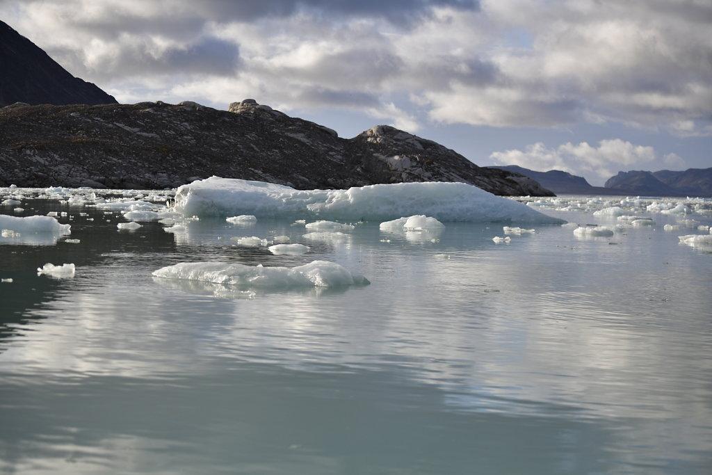 Sunlit Sea Ice