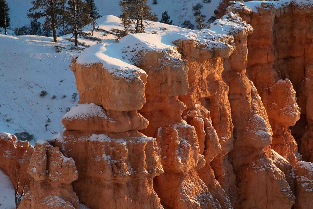 January Dawn in Bryce Canhyon, Utah